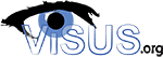 ViSUS - High Performance Big Data Analysis and Visualization Solutions